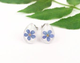 Forget me not earrings, Earrings with pressed flowers, Real blue flowers in stud earrings, Surgical steel studs, Hypoallergenic earrings