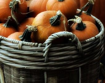 A Basket of Pumpkins #2