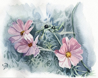 Cosmos, ORIGINAL watercolor painting, FREE shipping