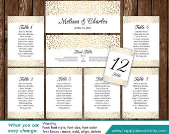 DiY Printable Wedding Seating Chart Template - Instant Download - EDITABLE TEXT - Gold Polka Dots Confetti Sprinkle  - Microsoft® Word Hn036