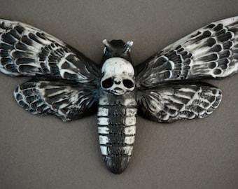 Deathshead moth magnet