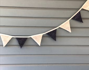 Blue and Silver Sequined bunting