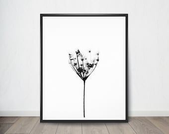 Black and White Dandelion Poster, Art Print, Digital Art, Digital Art Print, Digital Artworks, Digital Print Art, Digital Art Download