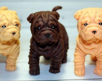 Mold dog Sharpei