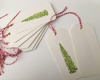 Green Pine Tree Gift Tags, Set of 10