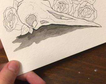 Floral Bird Skulls (Multiple Options)
