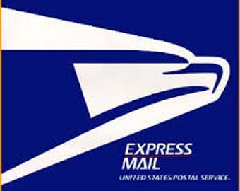 Upgrade to Priority Mail or Express Mail (US ONLY)