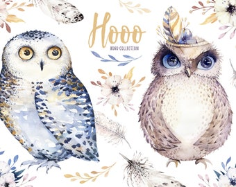 Hand Drawn watercolor owls,feather and flower. Nursery poster. Digital download boho clipart. Bohemian owl png illlustration. Animal clipart
