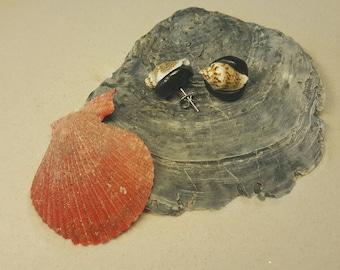 Maritime earrings with shells