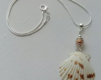 Shell pendant, scallop with inner bead, shell jewelry on Silver chain & Perlkäfig, portable on both sides