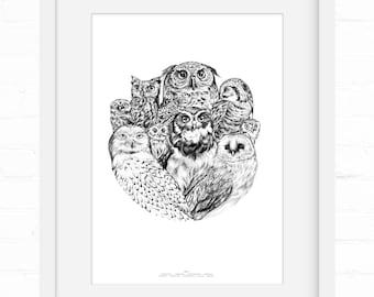 Owls | Art Print |  Home Decor | Wall Art | Wall Decor | Giclée Print | Bird Lover | Owl Lover | Owl Art | Owl wall art | Bird Art | OwlBird