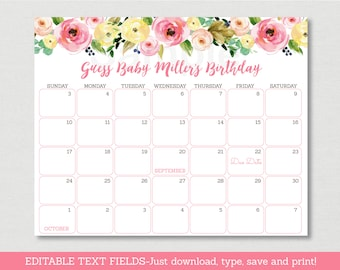 Pink & Yellow Floral Baby Due Date Calendar / Floral Baby Shower / Birthday Predictions / INSTANT DOWNLOAD Editable PDF A447