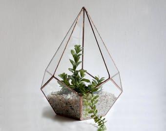 Raindrop Terrarium