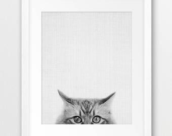 Cat Print, Grey Cat Print, Black And White Animal Print, Nursery Animal Wall Art, Home Decor, Cat Photography, Kids Room Decor Printable Art