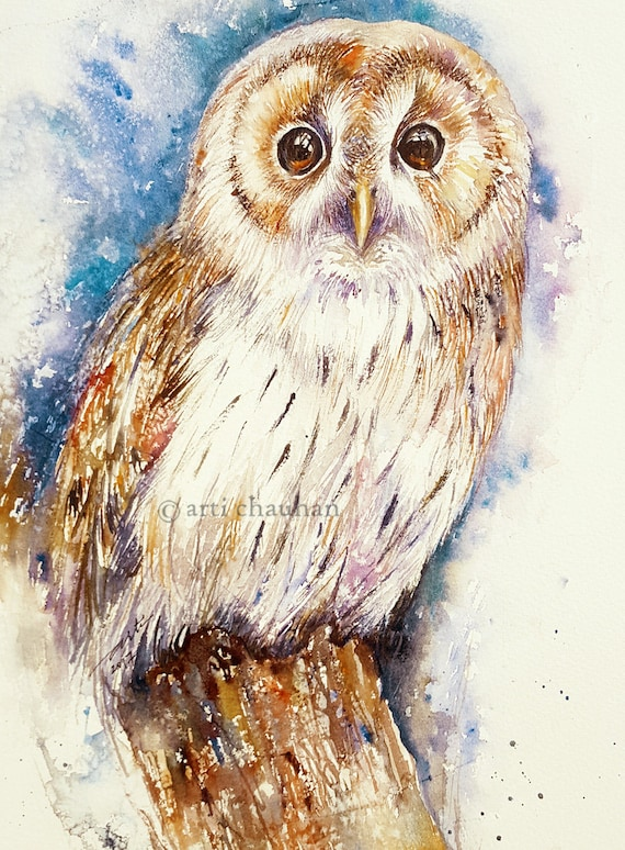 Owl Original Watercolor Painting Wall Art animal and Birds