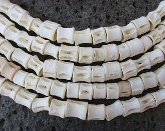 Fish vertebrae - size M - FV02