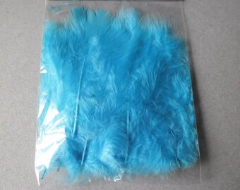 x 1 packet of 20 beautiful Turquoise feathers + - 11 cm