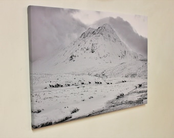 Mountain Canvas Print / Wall Art - Black and White Fine Art Mountain Landscape, Scottish Mountains, Red Deer, Glencoe, Snow covered mountain