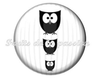 1 round, 30 mm cabochon, animals, OWL