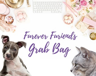Furever Furiends Planner Grab Bag - Stationery Grab Bag - Paper Lover Gifts - Scrapbooking - Pet Lovers Gifts - Planner Stickers