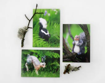 Set of 3 Woodland Animal Greeting Cards, blank card set, Spring, Birthday or any occasion Hare, Squirrel, Skunk Cards