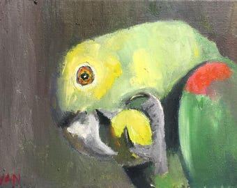 Bird Painting, Parrot Painting, Bird Art, Parrot Picture, Bird lovers Gift, Bird Lovers art, Green Painting, Green art