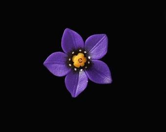 Woody Nightshade Pin Brooch