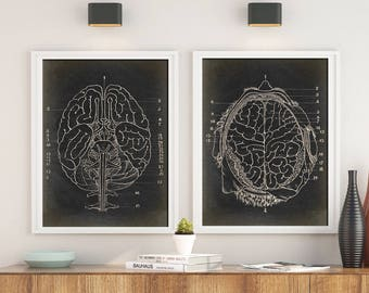 ANATOMY PRINT SET of 2, Anatomical Chart of the Brain,  Brain Print Study, Medical Room Decor, Anatomy Poster, Anatomy Wall Art in Black