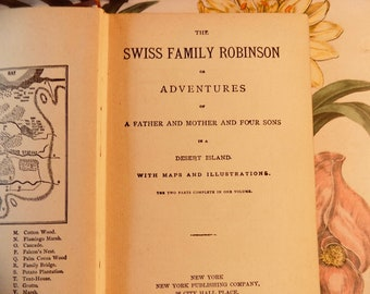 1895 The Swiss Family Robinson victorian Empire edition Johann Wyss NEW YORK CO 7th wonderful red and gold cover lovey antique book New York