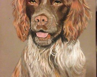 Unique Hand Drawn Portrait Of Your Pet In Pastel Pencils