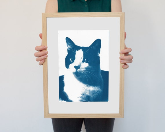 Cat Portrait, Cyanotype Print, Funny Art Print, Cat Lover Gift, Feline, Animal Lover Gift, Cat Poster, Black and White Cat, Cat Obsession