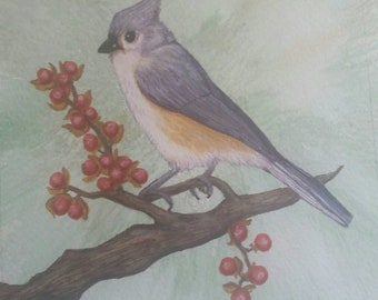Titmouse watercolor painting print