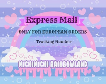 Shipping Upgrade / Express Mail ONLY FOR EUROPE