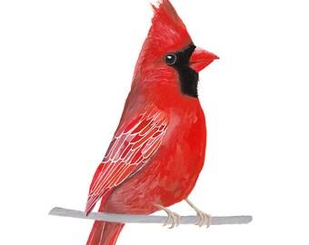 Bird Painting, Red Cardinal Painting, Bird Print, Printable Wall Art, Bird Illustration, Digital Download