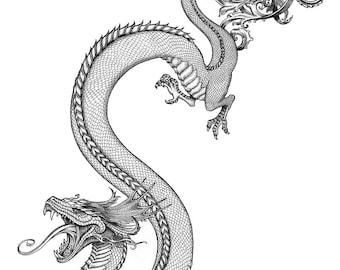 Water Dragon - print