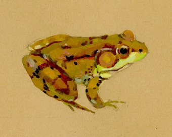 Northern Green Frog - brown paper planet fine art print