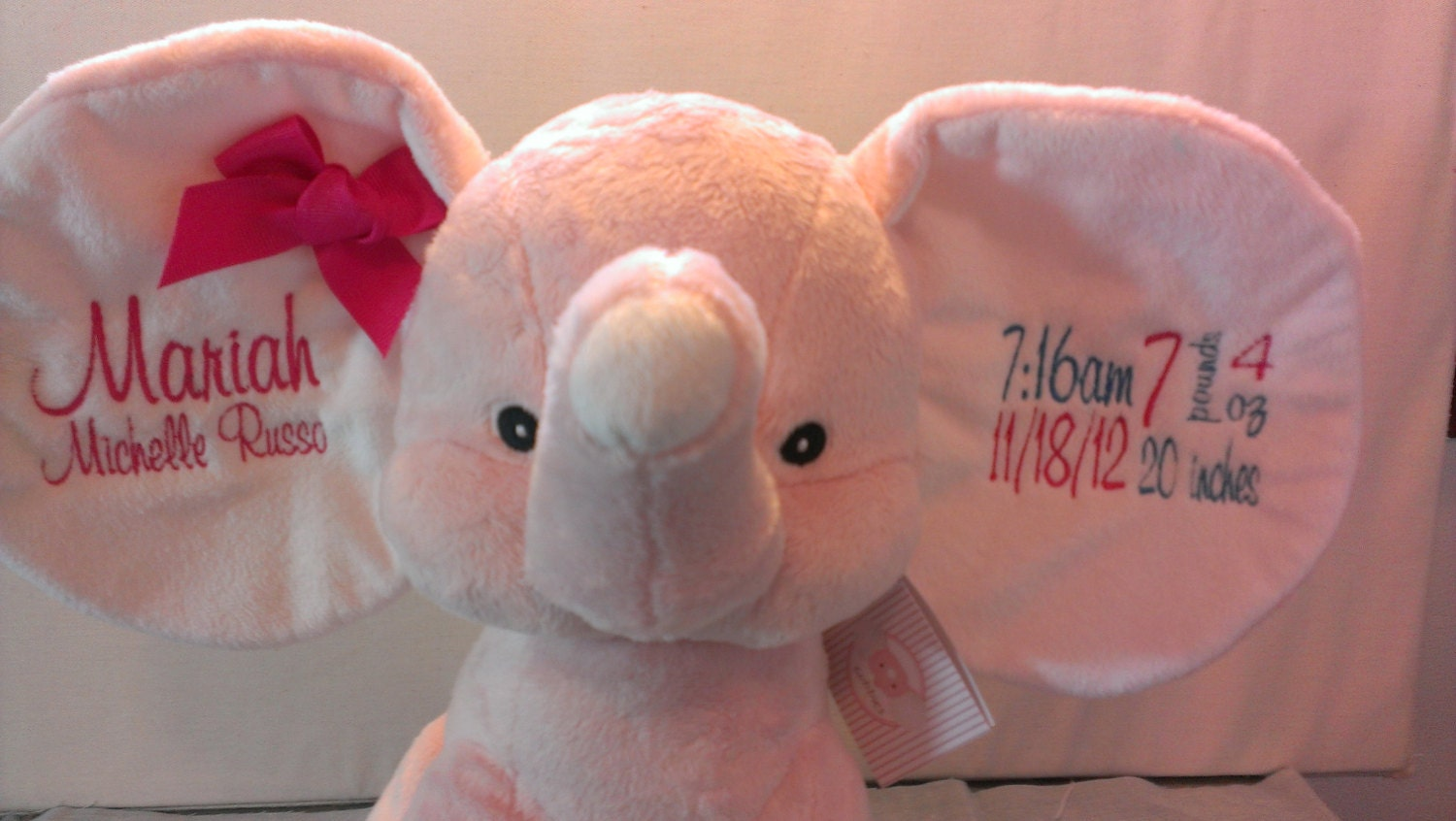 Personalized baby gift baby cubbies dumble zoom negle Gallery