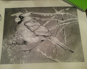 Cardinal Bird Ink Drawing/Painting