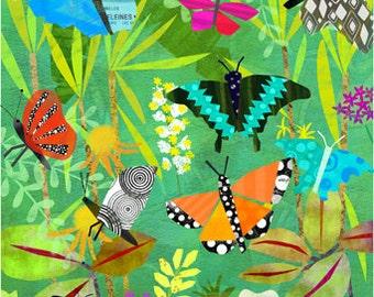 Butterfly Pavillion 11x14 Archival Print - art poster - wall decor