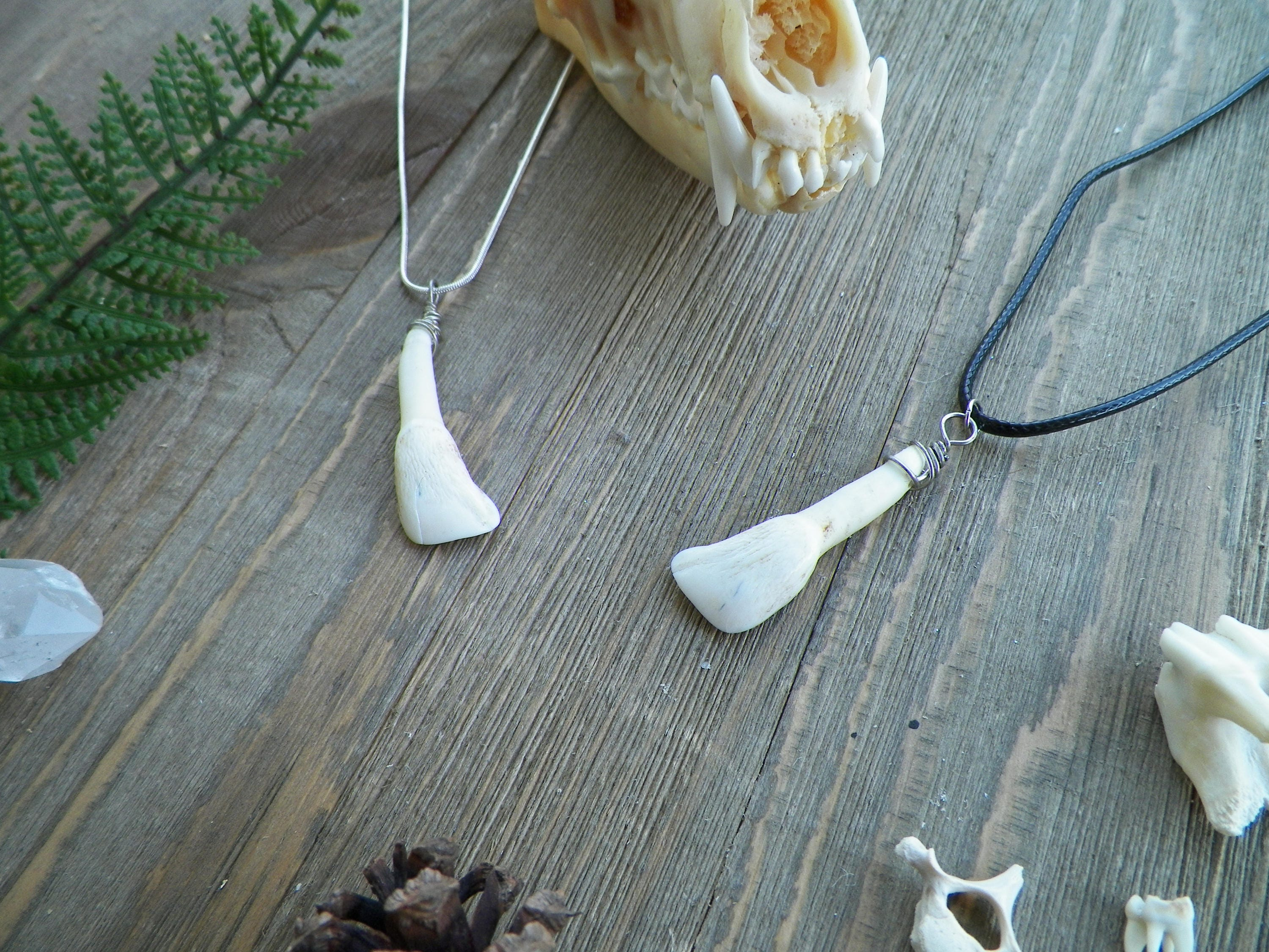 vulture culture oddities curio paws products paw curiousity real collections bone original mouse rat necklace skeleton jewelry