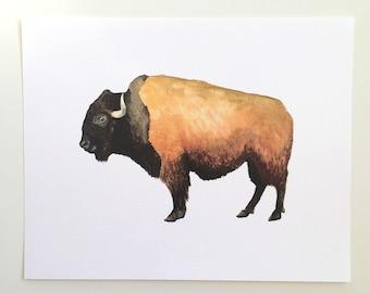 Bison Watercolor Art Print