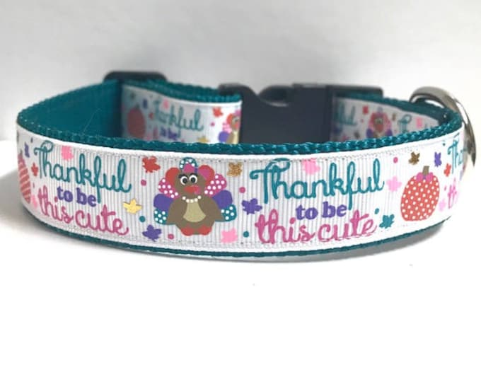 """1"""" Thankful to be this Cute Collar"""