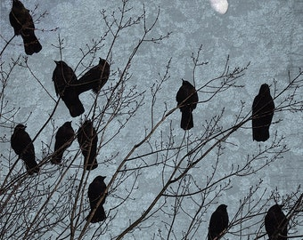 Crows Meet Under the Moon with Rich Blue Lichen Sky - Coming Home - Signed Fine Art Photograph Crow Art