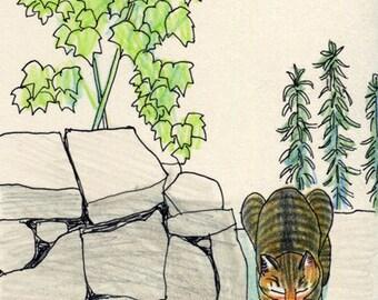 Cat original drawing - P004July2016