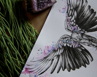 Bird/crystal A3 Prints watercolor illustration