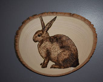 Bunny Rabbit Wood Burned Art - Pyrography