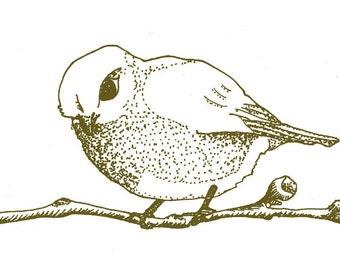 Cheerful bird illustration
