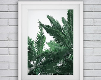 palm leaf prints,palm printable art,palm leaf artwork,palm tree nursery,palm tree picture,green leaf poster,tropical leaf prints