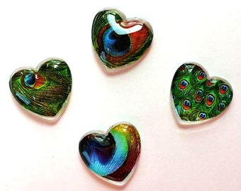 Magnets - Peacock Feathers - Peacock - Set of 4 - Free U.S. Shipping - 1 Inch Domed Glass Hearts