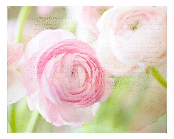 Art-Nature Photography- Fine Art Photography- Romance- French Script- Pink-Ranunculus-Nursery